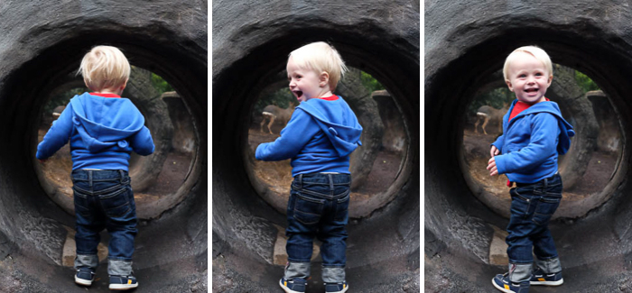 theo 3 tunnel